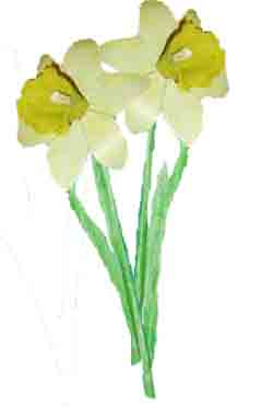Create your own life like model of a daffodil